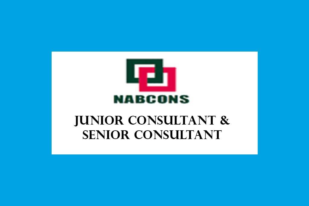 NABCONS Junior Consultant and Senior Consultant Recruitment 2020 – 78 Posts